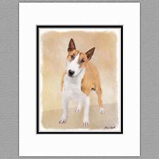 Miniature Bull Terrier Dog Original Art Print 8x10 Matted to 11x14
