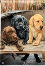Garden Flag, Labrador Puppies, Black, Yellow, Chocolate, Bundles of Cuteness