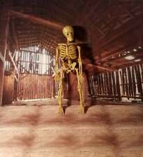 Miniature Scary Skeleton Some Parts Move Haunted 1:12 Spooky Dollhouse Diggs