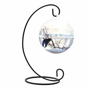 Fish Bowl Tank Flower Plant Vase Clear Round Shape Hanging Ball Glass Aquarium