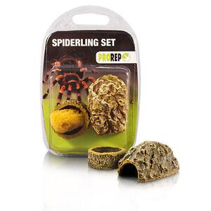 ProRep Spiderling Set & Micro Dish 4 Pack - tarantula, scorpion - bowl, hide