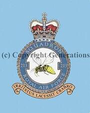 ROYAL AIR FORCE 213 SQUADRON  MOUSE MAT