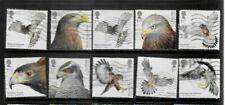 2019 Birds of Prey used