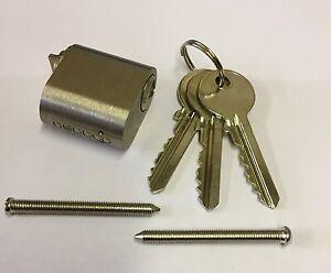 External Scandinavian Oval 6 Pin Cylinder With 3 Keys