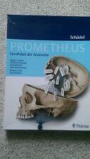 PROMETHEUS LernPaket Anatomie Schädel von Michael Schünke, Udo Schumacher, Erik…