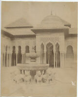 La Corte Lions Alhambra Grenade Spagna Albumina Vintage Albume D'Uovo Ca 1880