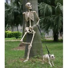 """Human Body Skeleton Model 60"""" Tall Posable Movable Joints Realistic Decor New"""