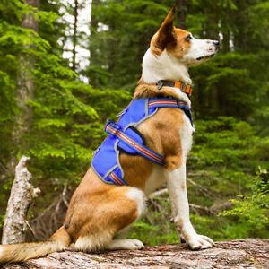 Nylon No Pull Reflective Dog Harness With Handle Adjustable Soft Padded Labrador