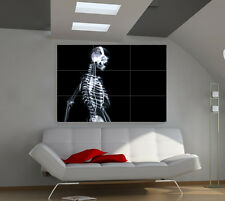 X-ray Skeleton large giant 3d poster print photo mural wall art ia186