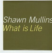 (FI713) Shawn Mullins, What Is Life - 1999 DJ CD