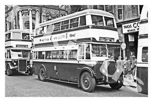 Bus Photograph BIRMINGHAM C.T. CVP 213 [1113]