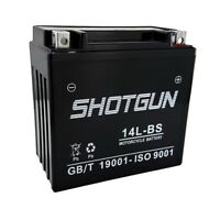 RG14L-BS YTX14L-BS Replaces Harley-Davidson SPORTSTER XL1200 (2004-2014) Battery