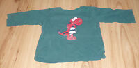 Dunkelgrüner dünner Pullover mit Dino Aufdruck von Lupilu - Gr. 86/92