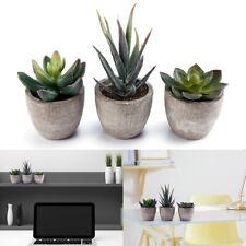 3PCS Decorative Faux Succulent Artificial Fake Simulation Plants with Pots