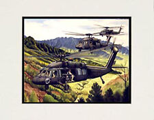 """US Army Blackhawk, Hawaii"" 11x14 Print by watercolor artist Garry Palm"