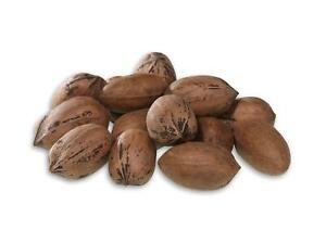 Organic Hard Shell Pecans Kosher Natural Vegan Vegetable Nuts Cook