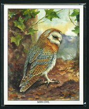 OWLS  Collectors Cards - Barn Little Long-Eared Short-Eared Snowy & Tawny images
