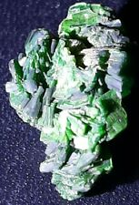 RARE Fluorescent Torbernite . Uranium ore. Very high activity. Uranium mineral