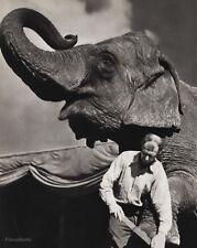 1940s Vintage 16x20 CIRCUS ELEPHANT Foot Feet Grooming Animal Ringling Photo Art