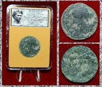 Roman Empire Coin AUGUSTUS Struck In COLONIA PATRICIA,SPAIN AUGUSTUS On Obverse