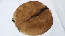"Djembe Drum Head 18"" Goat Skin Natural Fur/Bonga Drum Head Skin 18""/Renaissance"