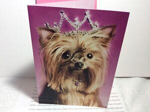 AVANTI PRESS HAPPY BIRTHDAY GREETING CARD New with Envelope Dog wearing Tiara!