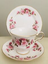 Vintage Queen Anne Bone china Trio cup saucer plate ENGLAND