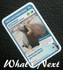 Woolworths <<AUSSIE ANIMALS>> Card 79/108 GREAT SOUTHERN OCEAN Elephant-Seal