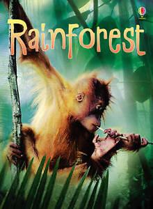 Brand New Usborne Beginners: Rainforests by Catriona Clarke