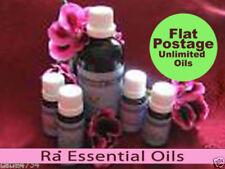 Lemongrass Glass Bottle Essential Oil Aromatherapy Supplies