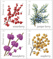 #5415 -5418a 2019 Winter Berries Booklet block/4 - MNH