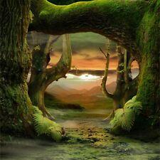 Vinyl 6x6ft Fairy Forest Photography Background Studio Theme Photo Backdrop Prop