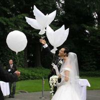 Eco-friendly Biodegradable Helium Balloons White Peace Dove