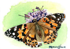 ACEO Limited Edition - Butterfly