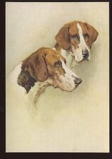 DOGS The Foxhound artist drawn PPC No21