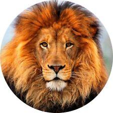 4x4 Spare Wheel Cover 4 x 4 Camper Graphic Vinyl Sticker Wild Cats Lion WC6