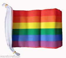 RAINBOW FLAG BUNTING 3 METRES 10 FLAGS GAY PRIDE