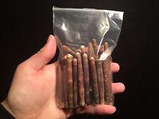 Taxidermie Cabinet de curiosités 100g d'épines d'Oursin crayon