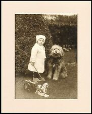 BEARDED COLLIE AND SMALL CHILD CHARMING DOG PRINT MOUNTED READY TO FRAME