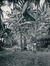 TAHITI c. 1940 - Fillettes Ph. P.I. Nordmann - T31