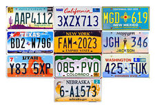 10 USA LICENSE PLATES - UNITED STATES TAG LOT NEW YORK CALIFORNIA FLORIDA (10A)