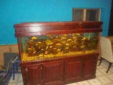 180 gallon aquarium with stand and canopy hood. Price Has Been Reduced