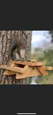Squirrel Picnic Table Feeder Kit Us Seller Free Shipping