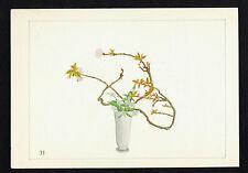 Double Cherry Blossoms, YaeZakura- 1930 Hand Painted Japanese Flower Arrangement