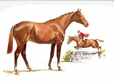 1962 HUNTER JUMPER Horse Colored Print - Sam Savitt