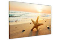 SUNSET OVER BEACH STARFISH FRAMED CANVAS WALL ART PRINTS HOME DECO WALL PICTURES