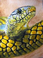 Painting Snake Reptile Animals Zoo Tropical Nature ACEO Art