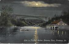 Lake in Panther Hollow, Schenley Park at Night, Pittsburgh PA vintage used 1911