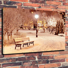 """Winter Snow In The Park Printed Box Canvas Picture A1.30""""x20"""" - 30mm Deep"""