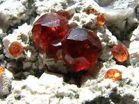 Perfect  Red Garnet  Crystals & Mica on Feldspar  Matrix  Mineral  Specimen!